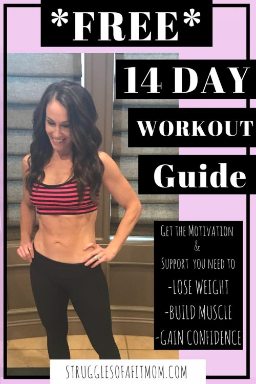 Free Exclusive 14 Day Workout Guide Fitness Tips